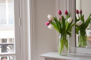 flowers - nov 9-14